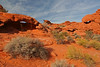 Valley of Fire, Nevada State Park : Overton, Nevada November, 2007